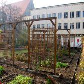 Gestaltung eines Schulgartens